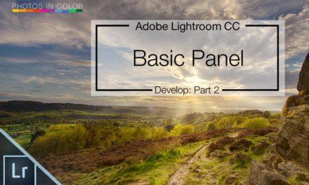 Lightroom 6 / CC Mastering the Basic Panel