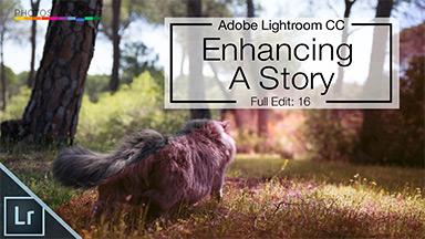 Lightroom CC Full Edit – Enhancing a story